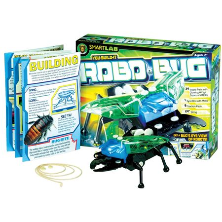 Picture of Build a Robo Bug